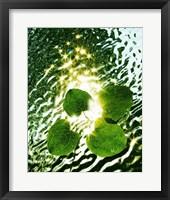 Framed Floating Light
