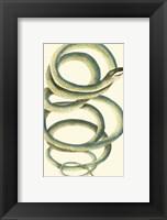 Framed Vibrant Snake II