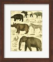 Framed Elephant & Zebra