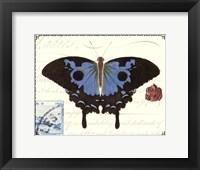 Framed Butterfly Prose III