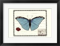 Framed Butterfly Prose IV