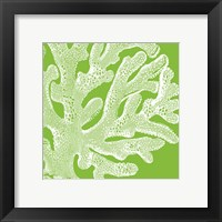 Saturated Coral II Framed Print