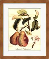 Framed Custom Tuscan Fruits IV (AO)