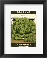 Framed Lettuce