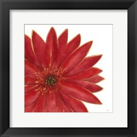 Bright Blossoms II Framed Print
