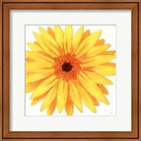 Framed Bright Blossoms IV
