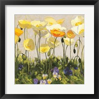 Framed Poppies and Pansies II