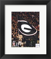 Framed Georgia Bulldogs Mascot 2008