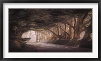 Framed Inside A Dream