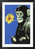 Framed Monkey Flower