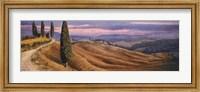 Framed Four Cypress