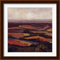 Framed Tuscan Vista