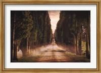 Framed Cypress Lined Road II, Siena Tuscany
