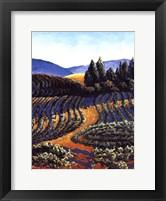 Framed Dawn Vineyards
