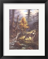Framed Timber Wolf