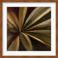 Framed Abanico I