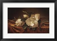Framed Magnolia On Gold Velvet Cloth