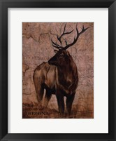 Nature Spirit II Framed Print