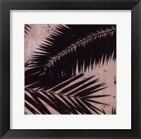 Framed Palmy II