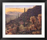 Framed Sonoran Sunset