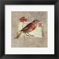 Framed Traveler Bird I