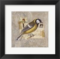 Traveler Bird III Framed Print