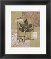 Framed Leaf Collage II