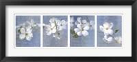 Framed Blossom Panel