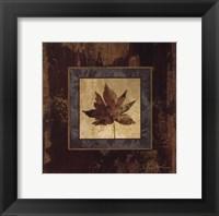 Autumn Leaf Square IV Framed Print