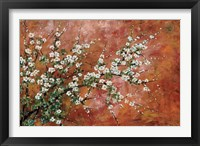 Framed Wild Plum Blossoms