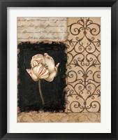 Night Florescence II Framed Print