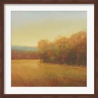 Framed Overcast