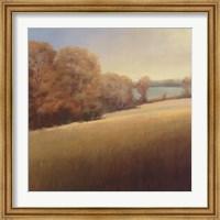 Framed Distant Lake