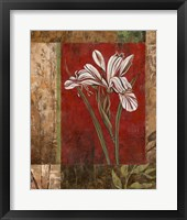 Framed Jeweled Iris II