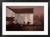 Framed Tree Shadows