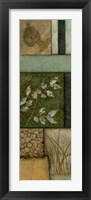 Elements of Nature II Framed Print