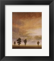 Open Sky II Framed Print