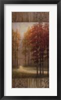 Framed October Trees I