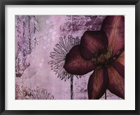 Framed Pressed Flowers I