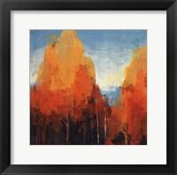 Framed Maples I