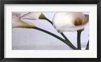 Springplicity I Framed Print