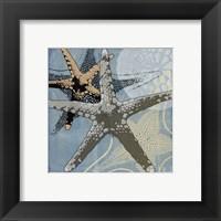 Ocean's Delight II Framed Print