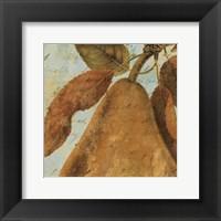Framed Joli Fruit II