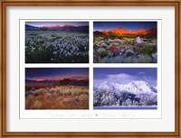 Framed Four Seasons