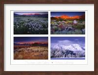 Framed Four Seasons