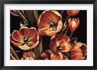 Framed Tulips for Isla