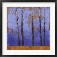 Framed Birch Trees I