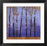 Framed Birch Trees II