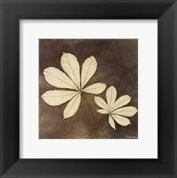 Framed Horse Chestnut Leaf
