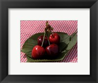 Framed Morello Cherries I